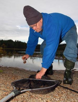 Leif Bispgärd tar han om en av sina infångade fiskar.