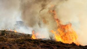 Den torra marken och vindarna gör risken för gräsbränder stor, enligt Henrik Axelsson, styrkeledare i Södra Dalarnas räddningstjänstförbund, där Fagersta och Norberg ingår.