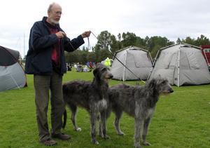 Till utställningens mer storvuxna raser hör skotsk hjorthund, som här ses med Mikael Nordström från Blixbo utanför Falun. Ägare till hundarna är hans fru Cecilia, och från vänster ses Mycroft´s Nina Noble, som kallas