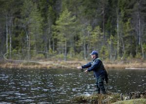 Lars Erik Hansen gillar att fiska med torrfluga. Han gillar också att äta fisk. Det gäller bara att fånga den. I Lövåstjärn, Holm, var inte regnbågen eller rödingen på hugget den här dagen. Men det blev några småöringar.