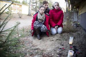 Alysia, Rosina och Geneka vid graven där Balto vilar.
