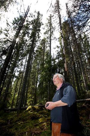 Rudolf Fenner är biolog och bor i Hamburg. Han företräder miljöorganisationen Robin Wood med ungefär 8000 medlemmar i Tyskland. Via rapporter från Naturskyddsföreningen har de fått upp ögonen för riskerna med att höga naturvärden går förlorade i det svenska skogsbruket.