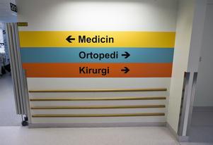 Patienter som ska åka iväg lämnas ibland övergivna, framhåller Moderaterna.