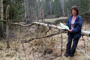 Elisabeth Nilsson som upptäckt många gamla stigar i kommunen framför en korvsjö i Mjällådalen som hon hoppas ska få ett naturskydd.