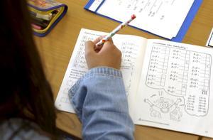 Studerar hemma. Regeringen vill förbjuda hemundervisning, där eleverna undervisas hemma av föräldrarna.foto: scanpix