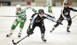 Erik Petterssons SAIK slog ut VSK med 3–2 i matcher i kvartsfinalserien. Sandviken åkte sedan ut i semifinal mot blivande svenska mästaren Edsbyn.