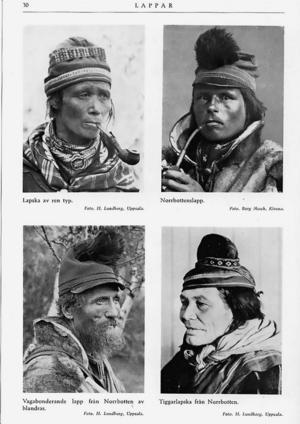 Så här beskrevs olika typer av människor när de genomgått Herman Lundborgs rasbiologiska analys.
