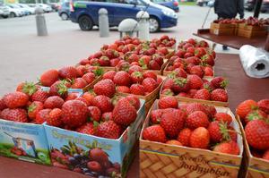 I år är de svenska jordgubbarna populära.