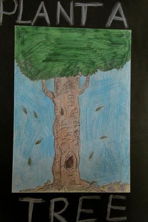 Plantera ett träd.
