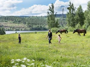 Emma, Astrid och Elsa med hästarna Ture och Hellman. Ture var travhäst och skulle slaktas, men går nu i stället som ridhäst hos Emma.