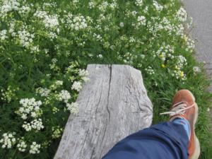 Skönt att vila fötterna, eller hur, efter en tuff cykeltur