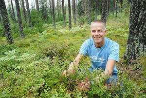 Ola Langvall är föreståndare för enheten för skoglig fältforskning vid Sveriges Lantbruksuniversitet och spår ett riktigt dåligt lingonår i Norrland.
