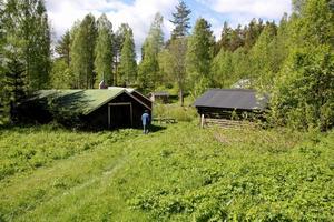 Vid fäbodvallen Körsåsen tar pilgrimsvandringen från Änga Nybo slut.