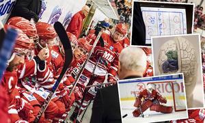 Försvarsspelet, målvaktsspelet och den mentala styrkan. Det är tre saker som ska förlänga säsongen för Timrå IK.