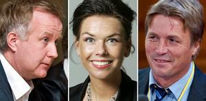 Johan Pehrson, (FP), Sofia Larsen (C) och Thomas Bodström (S) är de tre riksdagsledamöter från länet som får ut extra arvode varje månad.