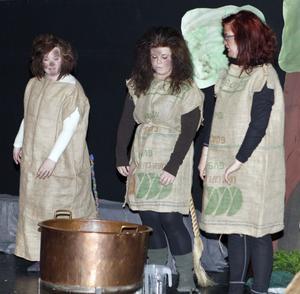 Trollen kokade soppa med både grodor, morötter och en huggorm som ingredienser.