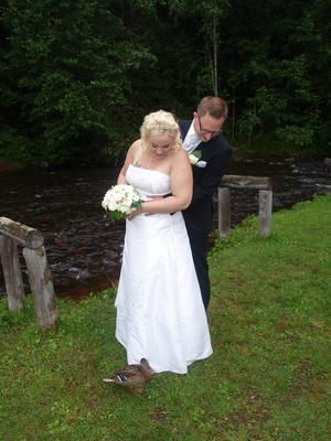 min dotter Emelie och Rickard fick en söt bröllopsgäst vid fotograferingen i vackra Säterdalen