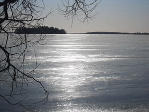 Söndag 26 februari ser jag vårvintersolen spegla sig i Mälarisen