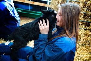 Amanda Söderberg gosar med en killing efter provet i reproduktion.Foto: Lina Lindbäck