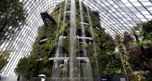 Världens högsta vattenfall inomhus.