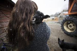 – Ända sedan jag var liten har jag velat bli bonde. Jag tycker om djuren, naturen och lugnet, säger hon.