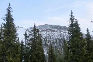 Lofsdalens skidanläggning hade ungefär lika mycket besökare under nyårshelgen som förra året.