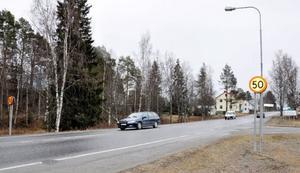 Ett rödgrönt styre skulle inte alls vara ett hot mot landsbygden, menar Karin Thomasson.Foto: Catarina Montell