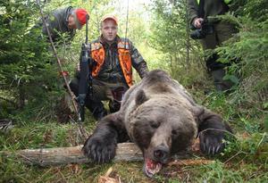 Hösten 2010 föll den här 244 kilo tunga björnen i Skyttmon.