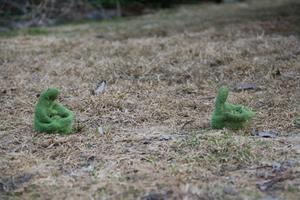 Min 1,5 åriga son Wilton tyckte att det blev varmt i vårvädret med fingervantar. Han tog av sig dom själv och så här hittade jag dom liggande i gräset. Eller är det en ny sorts fingersvamp!