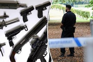 Vapenbrott ska ge hårdare straff och antalet polisanställda ska öka, skriver Socialdemokraterna.