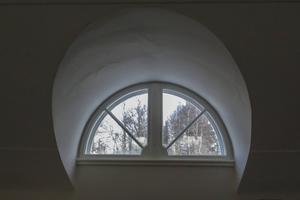 Takfönstret med utsikt över den träddunge som ser likadan ut som på 1950-talet.