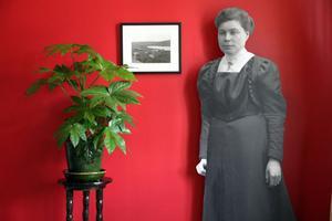 Agnes Andersson levde mellan 1865 och 1958. 1885 (eller 1884) öppnade hon sin första ateljé i Alfta. 1937 slutade hon sin bana som fotograf. Hon hade då också öppnat ateljé i Edsbyn. Hennes medhjälpare fotografen Greta Hall tog över rörelsen.