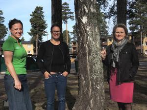 Helena Back, turismansvarig i Rättvik, Erica Sterner, projektledare för Internationella Marknader och kommunalrådet Annette Riesbeck (C) konstaterar nu att utvärderingen visar att Camp-Norway-veckorna var ett för Rättvik vinnande koncept.