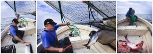 Håkan Sundberg tror att bättre lönsamhet för fisket skulle locka unga till yrket.
