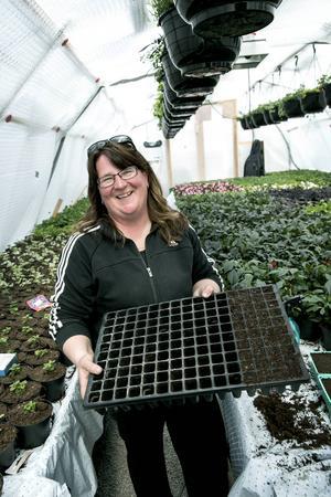 Pluggbrätten är bra när man ska så fröna ett och ett. Camilla Börjes delar gärna med sig av tips, men betonar att det gäller att pröva sig fram i trädgården.
