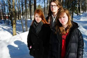 Elin Morén, Simon Appelblad och Camilla Svedberg Halvarsson är tre av eleverna från Jämtlands gymnasium som i fredags var i Stockholm och deltog i Ungdomens riksdag. Foto: Ulrika Andersson