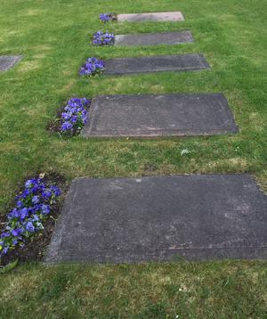 Familjen Hamiltons grav på Tillberga kyrka. Bilden visar några av grevarnas gravar.