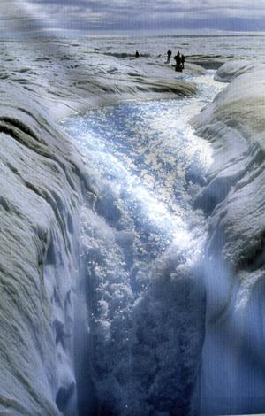 Smältvatten. Isen smälter på Arktis som en följd av den globala uppvärmningen.