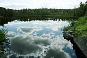 Foto: LARS WIGERT Bra öringsvatten. Ån som förbinder Hyn och Tolven har gott om öring.