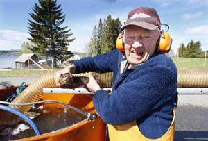 Tor Eriksson från Mörsil har satt ut fisk i Storsjön över 20 år. Här visar han upp ett exemplar av den unika Storboströmsöringen som föds upp i Bonäshamn.