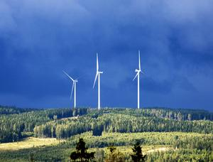 Kommunernas satsning på vindkraft i det gemensamma bolaget Samkraft ser ut att få ett dystert slut.