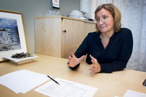 Kristina Säfsten, vd i Övik Energi tycker att hon gjort det hon ska göra, när hon vid samtliga tre tillfällen informerat sin styrelse om Sekabs nya avtal med Eco Development.
