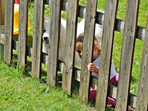 Viktigt att hålla koll på vad grannen gör, tycker de här två.