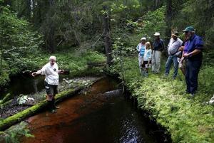 Sven Norman, ordförande i Nordanstigs naturskyddsförening visade Flodpärlmusslor i Dyrån. Han berättade att det förr var populärt att ta upp dem för att se om det fanns några pärlor innanför skalet på dem.