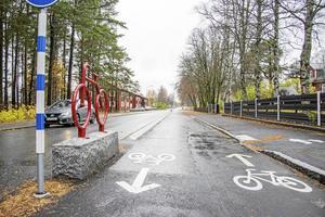 Expresscykelvägen på Brunflogatan används inte lika ofta som gatan Repslagarstigen, hävdar insändarskribenten.