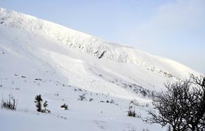Lavinen har gått vid Grokyrkan på Mullfjället, som ligger i ostlig riktning en bra bit utanför liftsystemet i Tegefjäll.