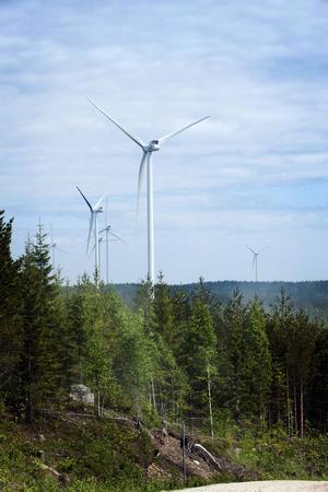 I Jädraås finns Sveriges just nu största vindkraftpark. Där står 66 vindraftverk och snurrar.