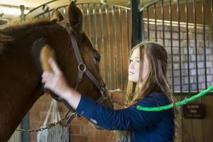 Madelene Young Shing var riktigt orolig under hästens operationer.