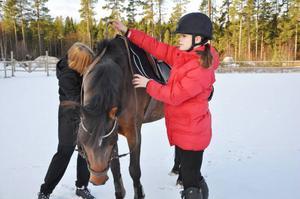 Ponnyn Tess är fem år och tävlar i klassen för D-ponnyer. Jennie Edström har tränat med Tess i knappt ett år men kvalade in till SM redan i maj. Så Jennie och Tess är väl förberedda även om de aldrig har deltagit i en sådan stor tävling förut.