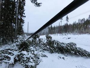 På vägen in till Börjesjö återstår mycket jobb för att röja upp i kaoset.